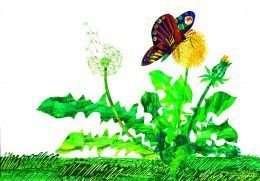 Tranh in Bướm và hoa