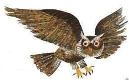 Bức tranh in chim Cú đang bay