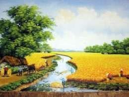 Tranh đồng lúa vàng ươm