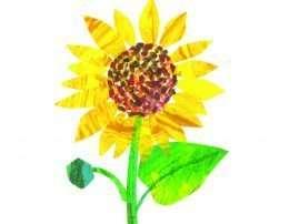 Tranh hoa hướng dương rực vàng