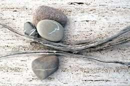 Tranh nghệ thuật đá và cây