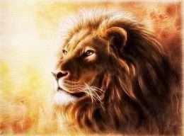 Tranh sư tử nghệ thuật