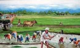 Tranh Phong Cảnh Gặt Lúa
