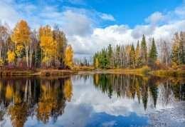 Tranh phong cảnh mặt hồ forbes