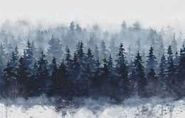 Tranh rừng thông vào mùa đông 4-4027