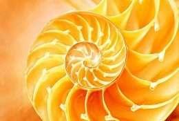 Tranh xoắn ốc trừu tượng màu vàng