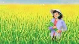 Tranh vẽ cánh đồng lúa đẹp