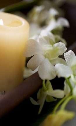 Tranh in hoa lan trắng 4-1004
