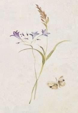 Tranh hoa nghệ thuật đơn độc 4-1006