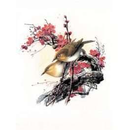 Tranh chim 1-12007